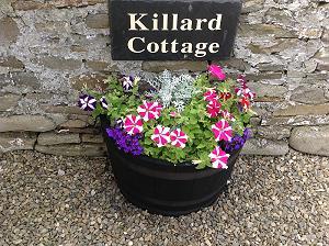 Killard Cottage